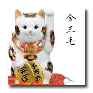 画像1: 九谷焼 8号小判招き猫 金三毛(紙箱入)