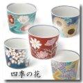 フリーカップセット 四季の花(木箱入)